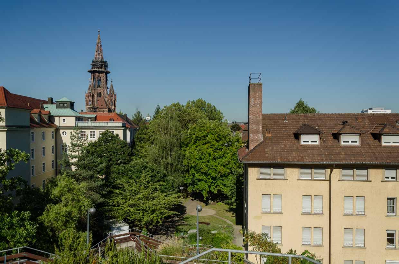 Blick auf den Stiftspark in Freiburg im August 2016.