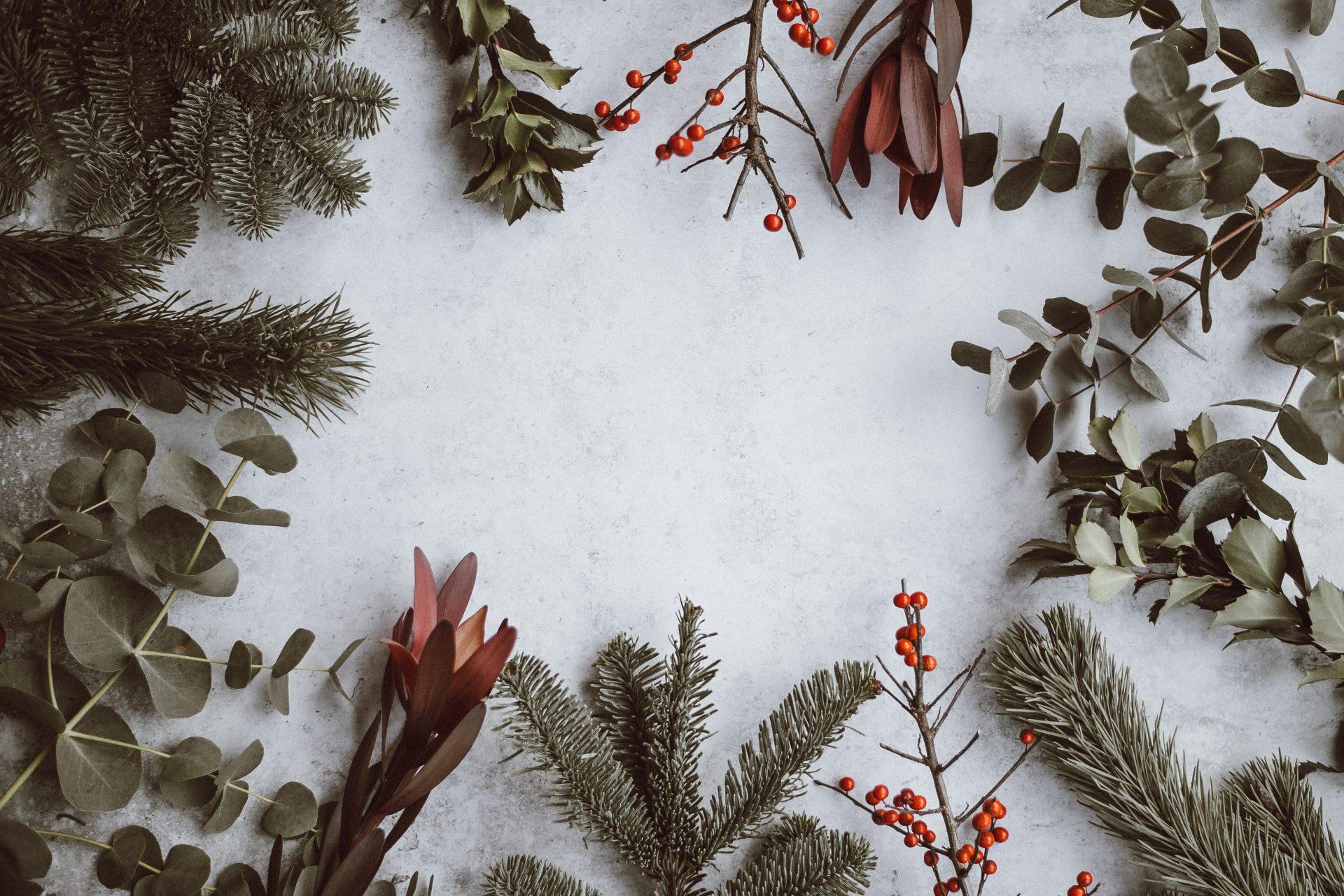 Alle Jahre wieder... Lieder, Geschichten und Gedichte  zur Weihnachtszeit