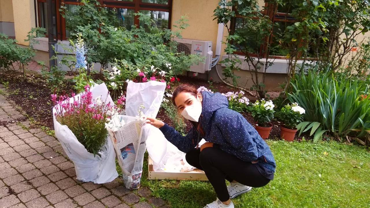 Blumenprojekt im Stiftspark Juli